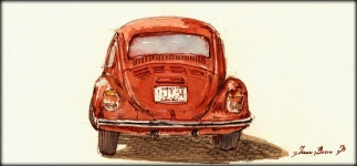 896-beetle-a-juan-bosco