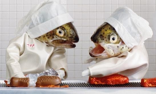 fish-art-76